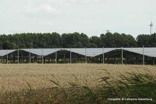 Gaashekwerk rondom Zonnepark Stadskanaal - Hoving Hekwerk B.V. Stadskanaal